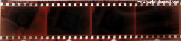 A piece of 35mm film showing four frames.