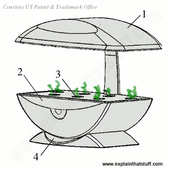 Line artwork drawing of a hydroponic Aerogarden with its main parts labeled.