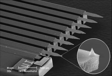The tips of the atomic force microscope (AFM) probe used on the NASA Mars Phoenix Lander.