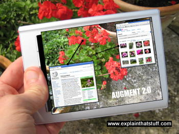 Augmented reality tablet computer being used to identify plants