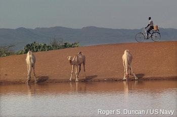 A bicycle in the desert