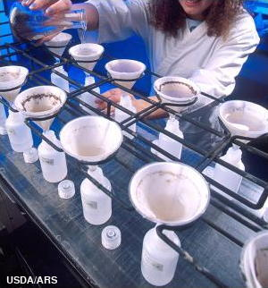 A student carries out biodiesel experiments in a chemical laboratory