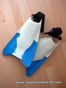 Typical blue and white bodyboarding fins.