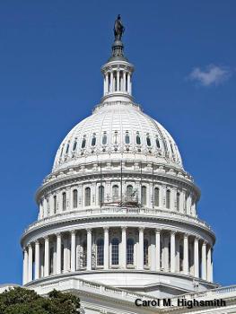 US Capitol in Washington DC by Carol M. Highsmith.
