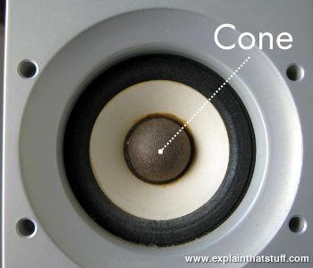 Closeup of the speaker cone in a small Sony bookshelf loudspeaker