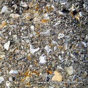 Concrete and reinforced concrete - Explain that Stuff
