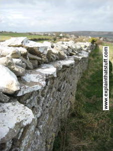Overhanging stones stop animals leaping over a dry stone wall.