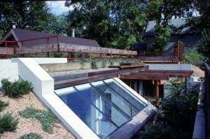An earth-sheltered, energy-saving eco home built partially underground.