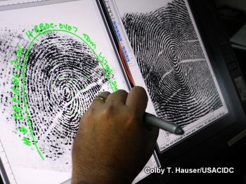 Examining large fingerprints on a computer screen in a forensic laboratory