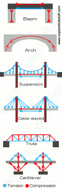 Compression and tension forces on six different types of bridges: beam, arch, suspension, cable-stayed, truss, and cantilever