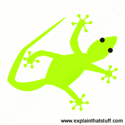 Cartoon green Gecko with feet splayed out and sticking to a wall.