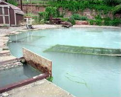 Geothermal pool heat exchanger.