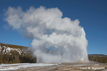 Old Faithful geyser in Yellowstone National Park by Carol M. Highsmith