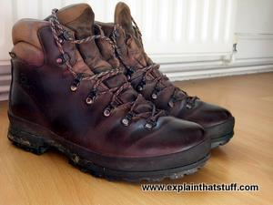 Scarpa brown GORE-TEX walking books