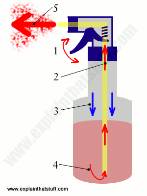 how to squirt diagram gay porn star porn