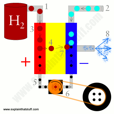 Artwork showing how fuel cells work