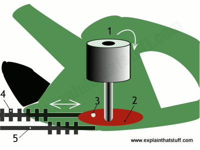 Simplified cutaway artwork showing the mechanism inside an electric hedgecutter.