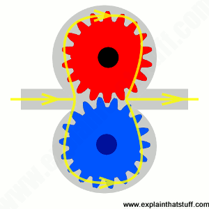 Simplified line artwork showing the components inside a hydraulic gear motor.