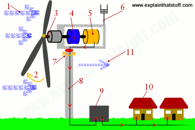 A simple numbered cutaway diagram showing how a turbine converts wind into electricity.