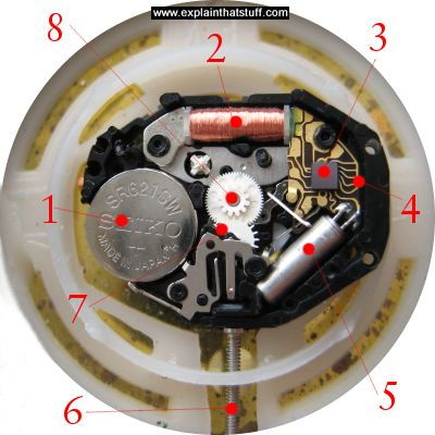 Component parts of a quartz watch