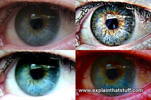 How do iris scans work? - Explain that Stuff