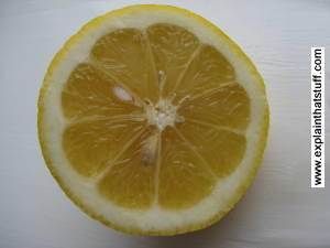 A lemon sliced in half.