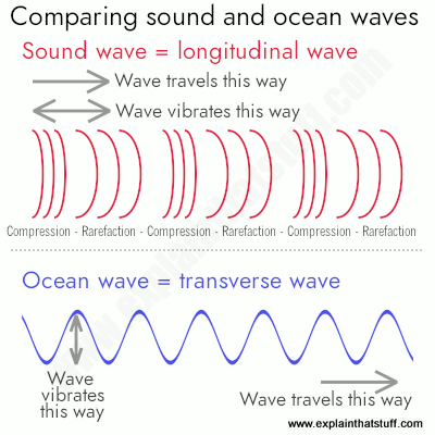 A line artwork comparing longitudinal sound waves and transverse ocean waves.