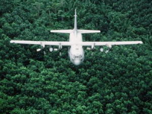 Hercules airplane flying low over forest.