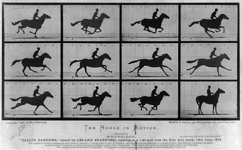 Muybridge photo sequence of galloping horse
