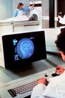 NMR body scanner