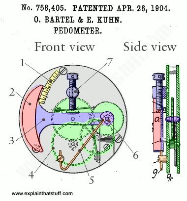 A typical mechanical pedometer using gears and a swinging pendulum, from the 1904 US patent of Bartel and Kuhn.