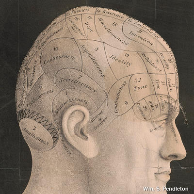 Spurzheim phrenological map of the brain.