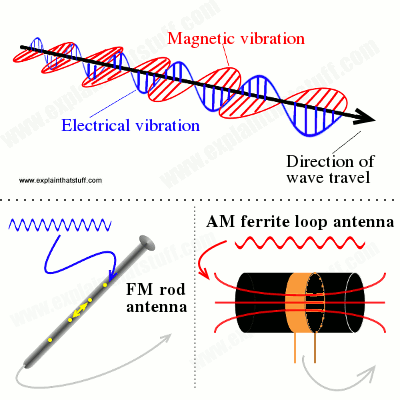 How FM stick antennas pick up electric fields while FM loop antennas pick up magnetic fields.