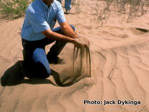 An agricultural scientist examines soil that has turned to dust in Mexico due to soil erosion by the wind.