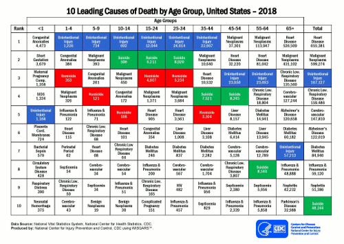 Top 10 leading causes of death for different age ranges in the United States, 2012.
