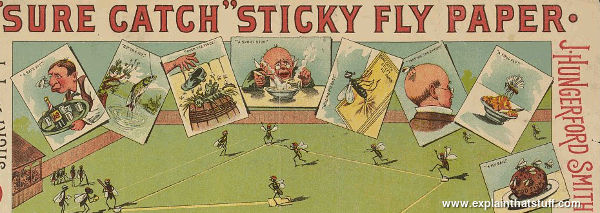 Detail of 19th century Sure Catch Fly Paper showing trapped flies in cartoon style.