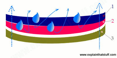 Illustration showing the inner structure of a three-layer sports jacket.