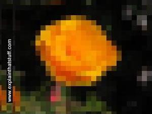 How 10 times more pixels make an image sharper